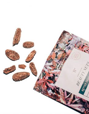 Probiotic-Pili_Nuts_Cacao